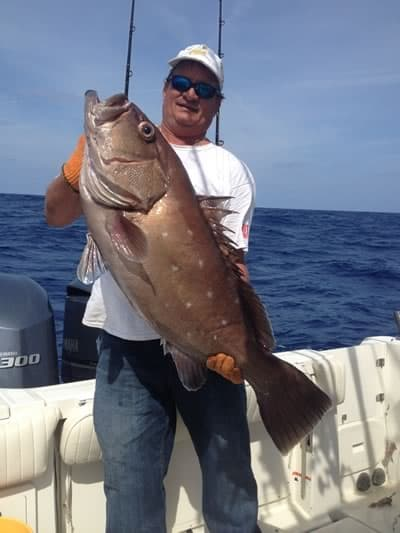 snowy grouper caught deep dropping in Marathon FL Keys