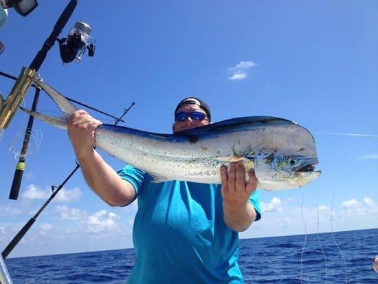 big mahi mahi caught in Marathon, Florida Keys