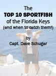 Marathon FL sportfishing tips