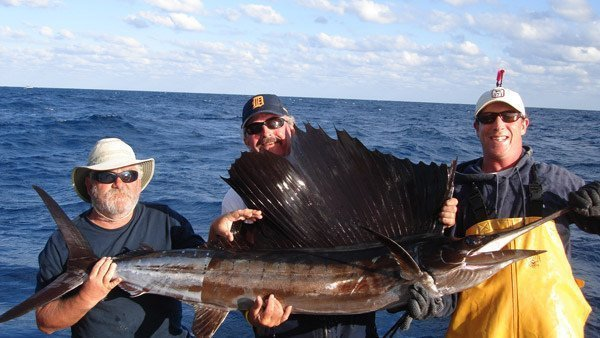 sailfish fishing tours offshore Marathon, Florida Keys