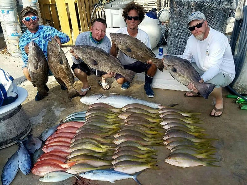 fishing-charter-grouper-snapper